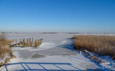 Winter 2021 in het Wormer- en Jisperveld